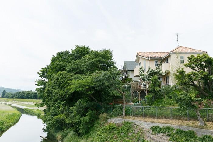 川沿いに建つ山本さんの家。傾斜地に足場を組んだ川床のようなウッドデッキと、家を包み込むような白いバラが見える。