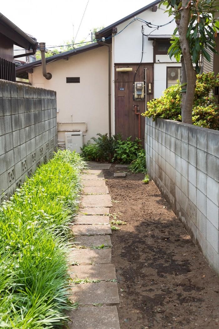 家へと続く路地の脇にもグランドカバーの種を蒔き、育成を待っている。