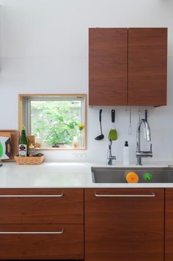 キッチンの壁に開けられた小窓からも緑が見える。