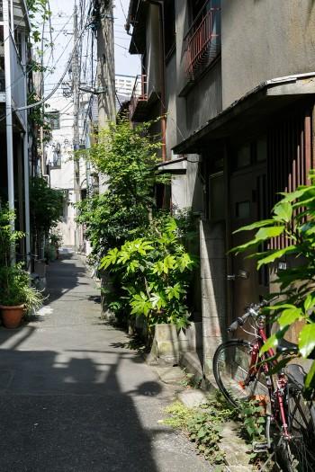 堀田邸のある路地。にぎやかな大通りから脇に入ると、一転して人々の生活圏。