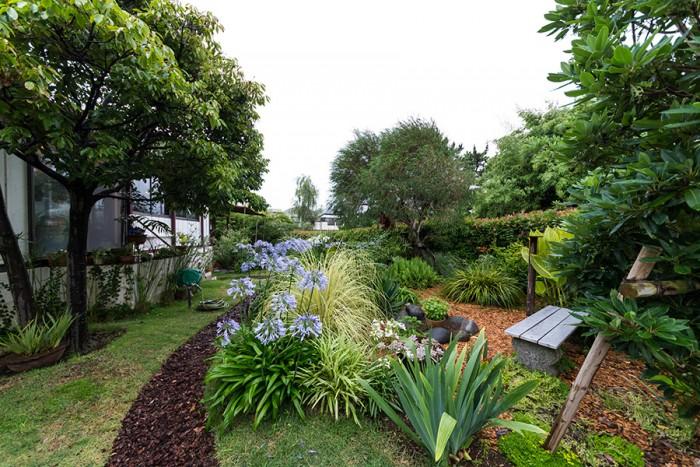 四つ目垣の入り口を入ると、庭が広がり、奥に家が現れる。アガパンサスが出迎えてくれるかのよう。