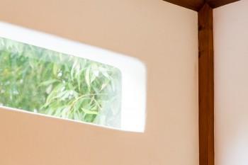 漆喰の壁に設けた窓。緑が切り取られ、光が差し込む。