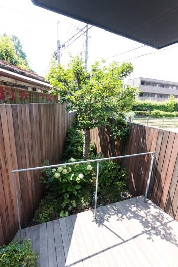 板塀で囲んだ庭に、大切なカリンの木を移植。
