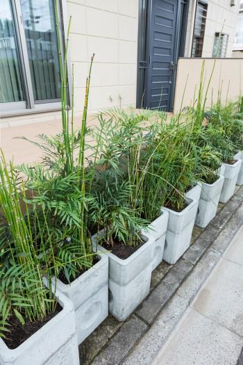 1階ダイニングから続くデッキの前にはコンクリート枡にグリーンを植え、緑が見えるように。