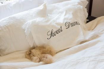 「Sweet Dreams」と刺繍されたピローは、フェリシモのchichettiというサービスで景都さんがプロデュースしたもの。