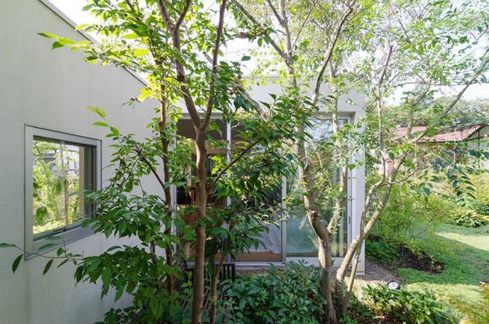 山﨑さんの部屋の側から寝室を見る。手前にあるような高木は竣工時に植えられたものだが、それ以外は奥さんの手によって植えられ育てられたものだ。