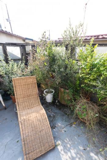 ベランダでは夜、食事をすることも。「花よりいいかなと思って」、オリーブ、ローリエ、アカシアなどのグリーンを育てる。