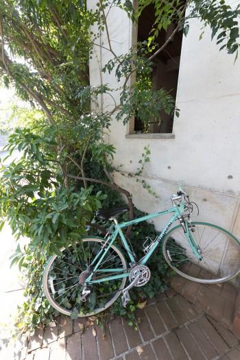 自転車の上の窓の向こうは、家の中のようで外。内外が渾然一体となった空間。薄暗くて雨がしのげて中から見通しも効く。本能的に安心できる場所。