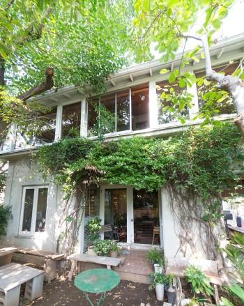 ポーチに緑の屋根。「いろんな種類のつた植物を植えましたが、自然淘汰されて、残っているのがカロライナジャスミンとつるまさきです」