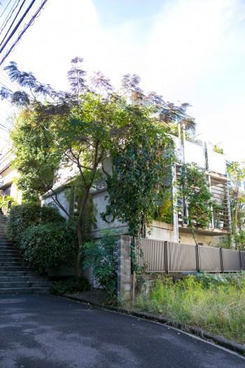 竣工は2001年。14年の間に植物が大きく育ち、建物が緑で覆われた。
