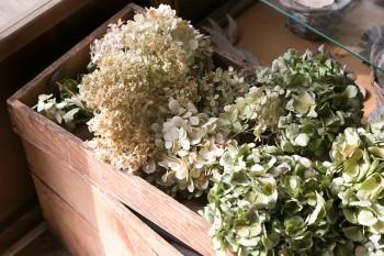 花ものでよく使用するアジサイは、ドライフラワーに。