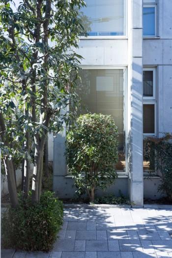 コンクリート打ち放しのモダンな建物。敷地の南側に植えられたグリーンも美しい。