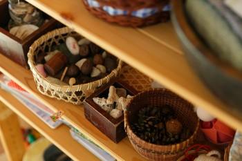 木の実や松ぼっくり、珊瑚などが家のあちこちに飾られている。