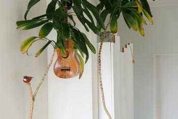 ウクレレや色鮮やかな鳥が飾られていて、どこか南国ムードが漂う室内。