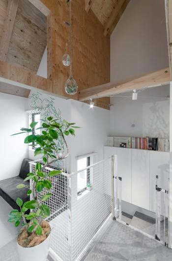無機質な室内に和やか感を与えているグリーンは、異なる種類のものを配置し各部屋に独自の空気感をつくり出している。