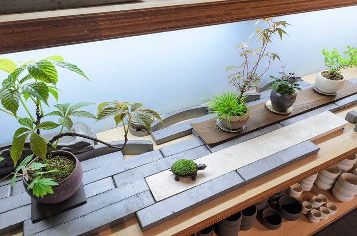 瓦を取り入れたディスプレイに注目。伝統ある菊間瓦の美しさと盆栽を組み合わせ、シックでモダンな和の空間ができあがる。