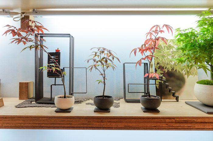 よく植物を枯らしてしまうという人は、植物が酸欠で根腐れをしている可能性が高い。品品では水が溜まらないよう、平な水受けをすすめている。