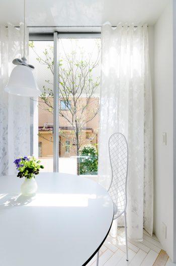 ダイニングのカーテンも他とは違ったデザインで、白の色合いも異なる。