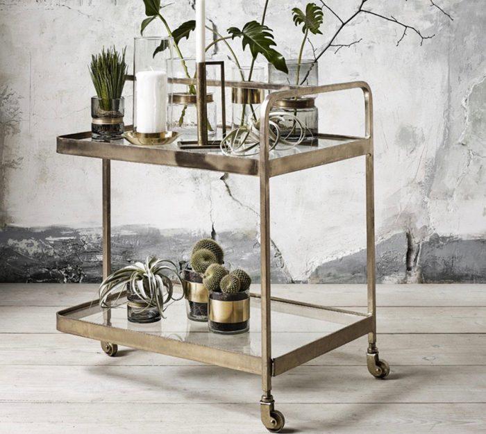シンプルな植物を引き立て、独特な雰囲気に。