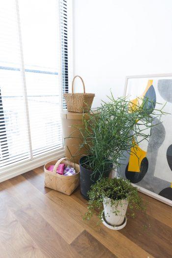グリーンとアートの組み合わせが、室内に潤いを与える。