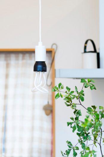 ライトはプルーメンという電球型蛍光灯 。見る角度でいろんな形に見えるのが面白いことから小川さんが選んだものという。
