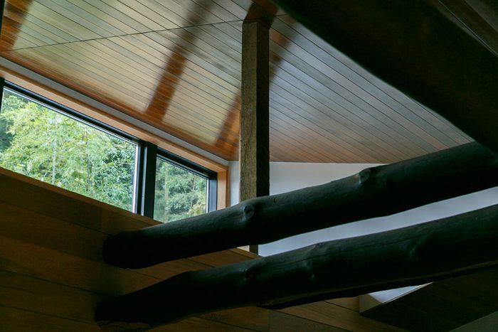 新設したハイサイドライトから、光と裏山の緑を取り込む。光を反射する効果を狙って、天井に光沢のあるレッドシダー材を張った。