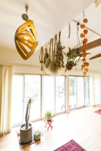 手前は照明作家の谷 俊幸さんのワッパランプ。曲げワッパを使った作品で、夜は壁や天井を照らす光の帯が美しい。