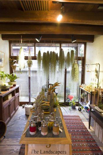 『アラウンド』は、ライフスタイルの中に植物を取り入れるイメージを作りやすい店内になっている。