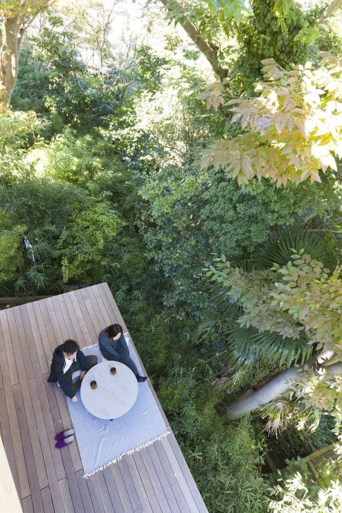 屋上に登る階段から見下ろしたデッキ。葉山ならではのたっぷりとした緑に癒やされる。