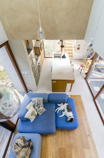 2階の佐藤さんの趣味の部屋からリビングのソファでくつろぐペティ(左)とフェイフェイを見下ろす。