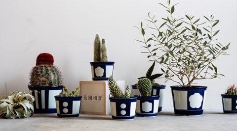 中川政七商店の冬支度 -1-やさしい香りを纏い日本の園芸を愛でる