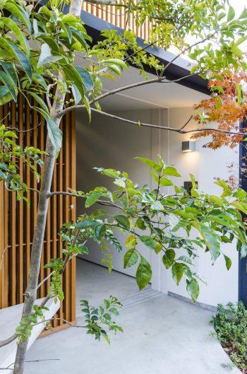 左に造り付けのコンクリート製のベンチ。モミジなどのグリーンの佇まいもいい。