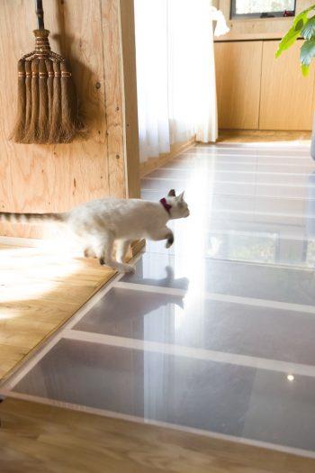 1階への採光のため、2階の1部の床が半透明のアクリルになっている。