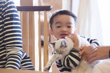 「一軒家は、子どもを伸び伸びと育てられるのも良かったですし、ペットが飼えるのも魅力でした」
