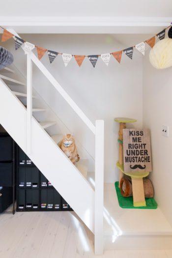 2階の主寝室に設置した屋根裏に続く階段。人も猫もワクワクする空間。