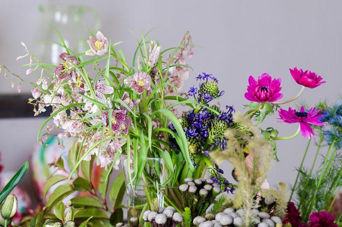ぱっきりとした色合いから繊細な色までさまざまな色合いの花が勢ぞろい。