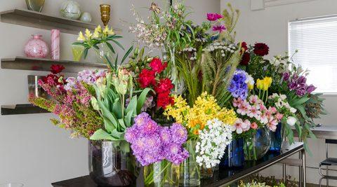 春の花を探しに行く-2-注目エリア、松陰神社前のフラワーショップ「duft」