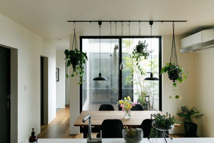キッチンからダイニング、中庭方向を見る。ライティングレールにグリーンをたくさん吊るして楽しんでいる。