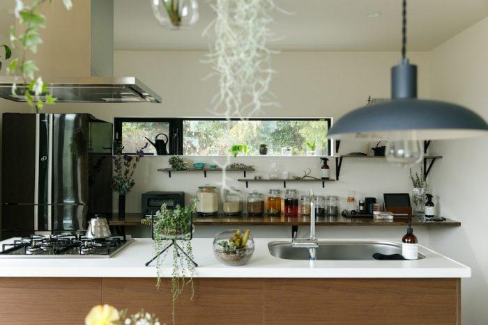 生活感が出ないようにと考え抜かれたキッチン。細長い窓が敷地裏側の木々の緑を切り取る。