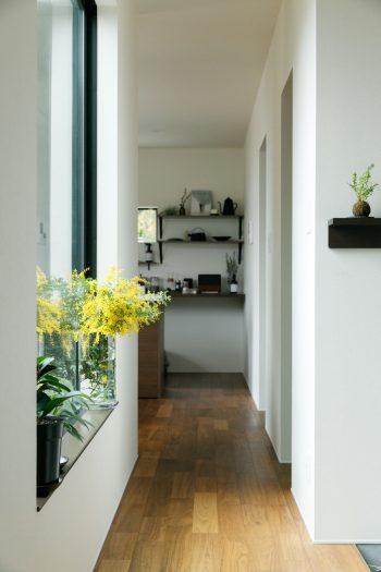 ダイニング・キッチンとリビングの間に扉はなく、中庭と廊下が緩やかに空間を振り分ける。写真左に中庭、右に玄関がある。