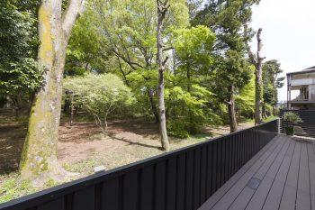 公園の緑を楽しめる北側のウッドデッキ。「夏でも日焼けを気にせず過ごすことができます。公園内には鳥獣保護区があるので、たくさんの鳥がやってきます」