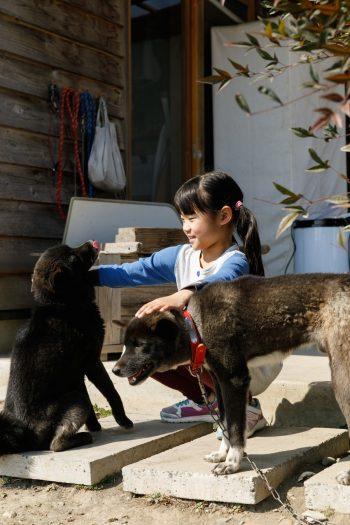 愛犬のカイとパイは、4年前に家族の仲間入り。人懐こく、愛嬌たっぷり。