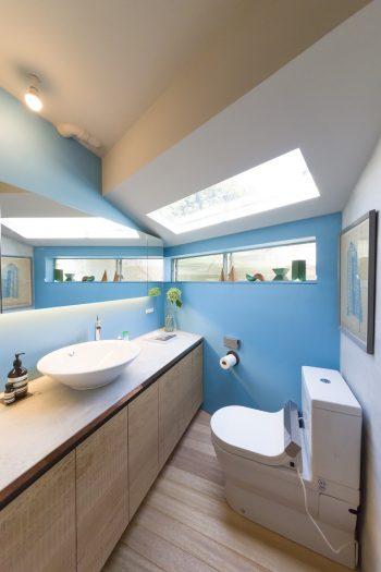 ブルーの塗装が鮮やかなトイレ。洗面の下の収納棚の面材にも、荒削りのアメリカンレッドシダーを使った。