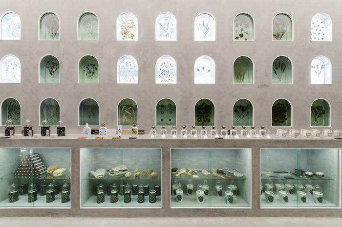 ビュリーで使われている原料をはじめ、さまざまな植物を閉じ込めたアクリウム。まるで美術館にいるような感覚が味わえる。
