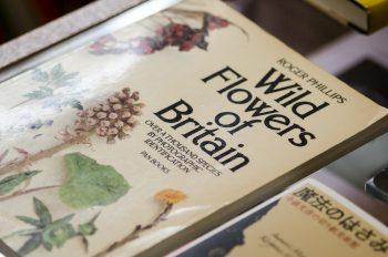 大和田さんにおすすめの本を紹介してもらった。1冊目はイギリスの野生の花を約1000種類を収めた図版『Wild Flowers of Britain』。