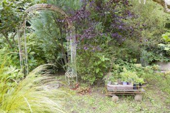 成長した葉の色や形なども考慮して、グリーンをコーディネート。