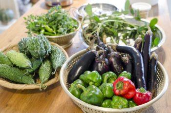 テーブルに並んだ野菜は全て、近所に借りている畑や庭で幹子さんが育てたもの。