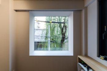 3階の寝室から外の柳を見る。