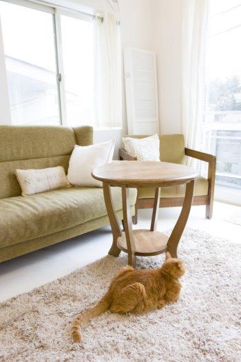 淡いグリーンのソファーはなんとホームセンターで購入。コーディネートの技が光る。