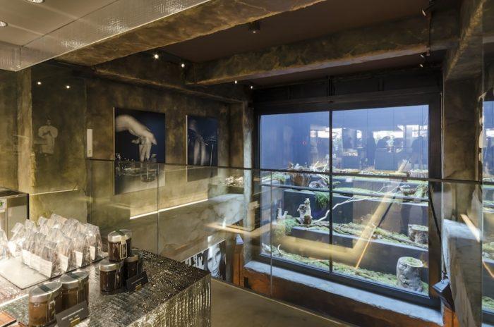 地下一階からの吹き抜け部分。壁面には森山大道の作品4点を展示している。